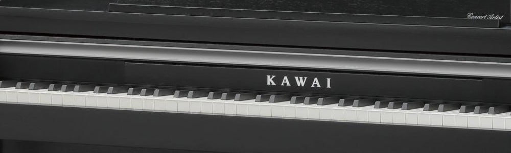 page-comment-Kawai-CA17