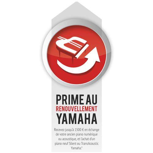 blog-prime2016