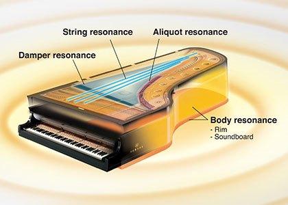 technologie VRM des clavinova Yamaha