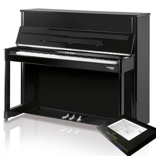 W. Hoffmann Professional P114 noir Vario