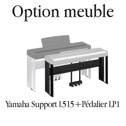 pack option meuble P515