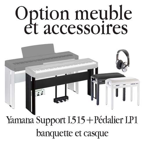 pack option meuble et accessoires P515